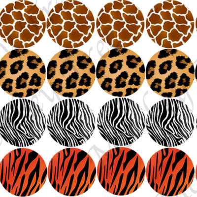 animal cupcake tiger zebra giraffe fondant cheetah
