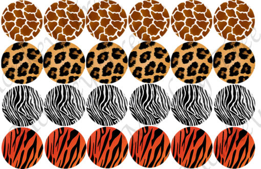 animal cupcake tiger zebra giraffe fondant cheetah