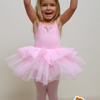 ballerina tutu fluffy dress up