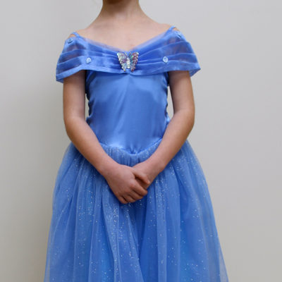 cinderella dress party princess