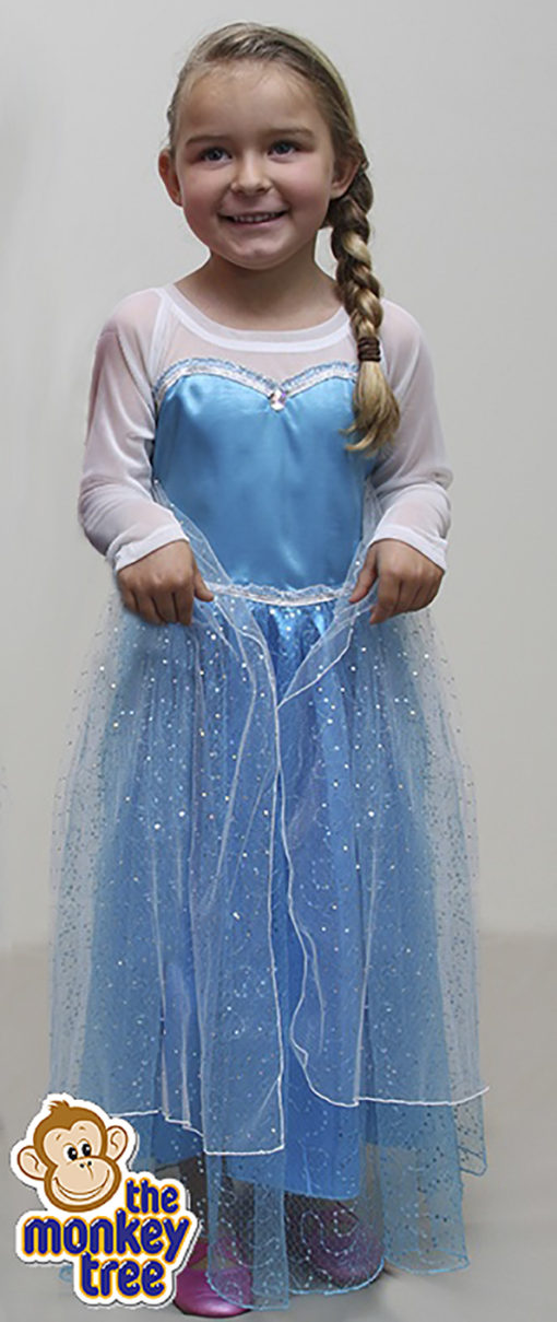 elsa dress up frozen party dress