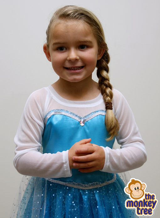 dress up elsa dress frozen birthday party