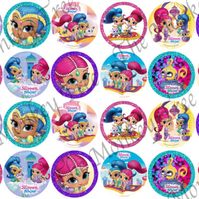 shimmer and shine edible cake topper photo birthday cake cupcake