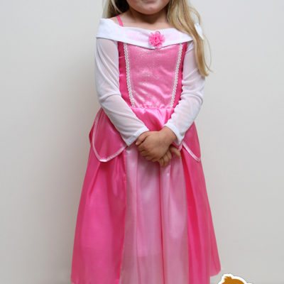 princess aurora sleeping beauty dress party birthday Christmas