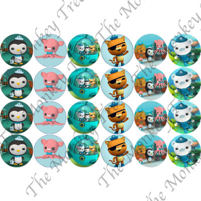 Octonauts edible cake image topper birthday cupcake