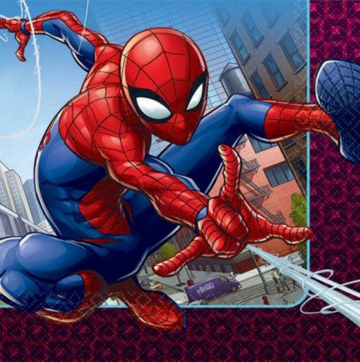 Spiderman webbed wonder napkins birthday superhero party